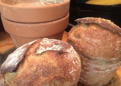 sour dough flower pots